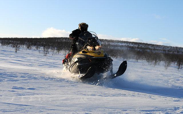 Raid motoneige en Laponie dans la poudreuse