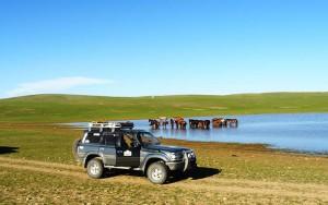 raid 4x4 mongolie avec Planet Ride