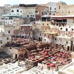 voyage en camping car au maroc fes tannerie