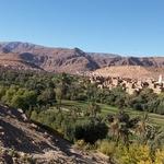 camping car maroc palmeraie