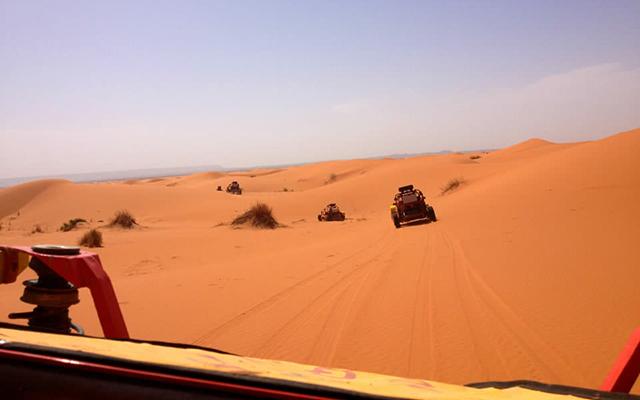 sahara buggy