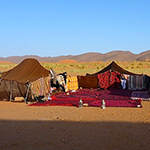 raid buggy marrakech