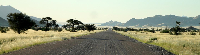 De déserts en réserves : domptez les pistes de la Namibie à bord d'un 4×4