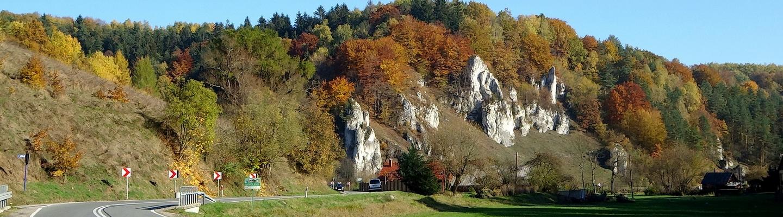 planet-ride-voyage-pologne-camping-car-route-paysage-végétation