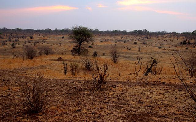 planet ride grandeur nature immersion 4x4 desert kalahari