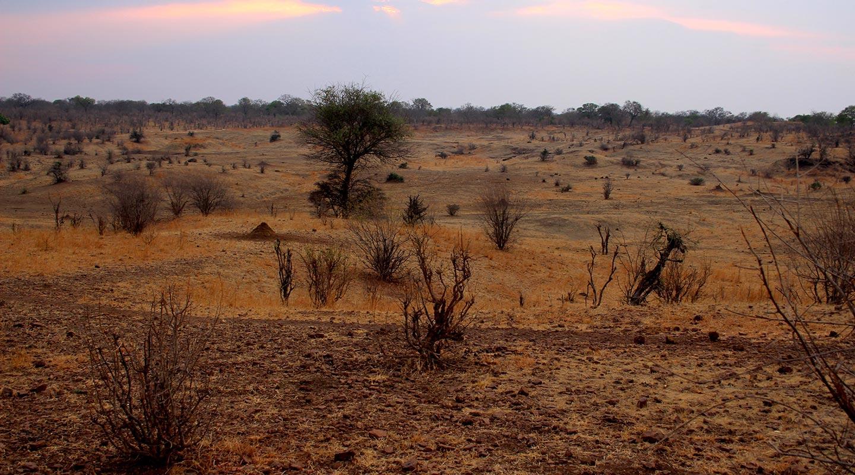 planet ride grandeur nature immersion 4×4 desert kalahari background 1
