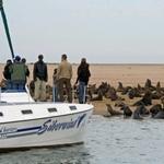 voyage 4x4 namibie