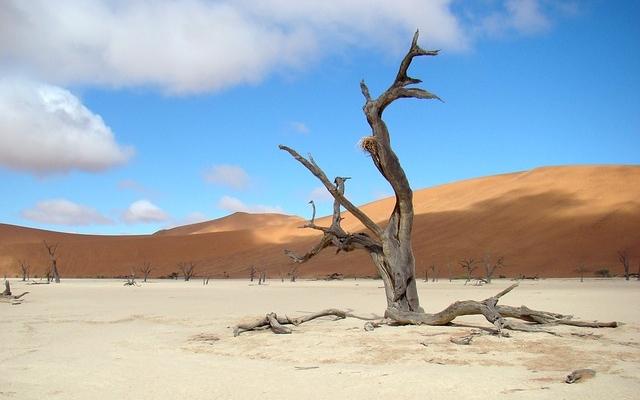 paysage namibie 4x4