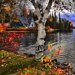 Le Canada entre lacs et fôrets : à la découverte des Hautes Laurentides en quad