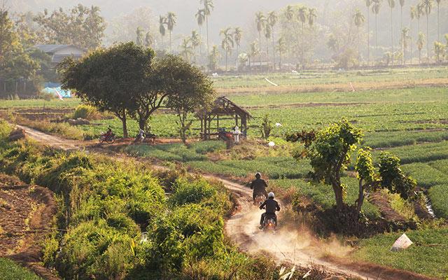 Voyage en Thaïlande à moto avec une agence de voyage locale