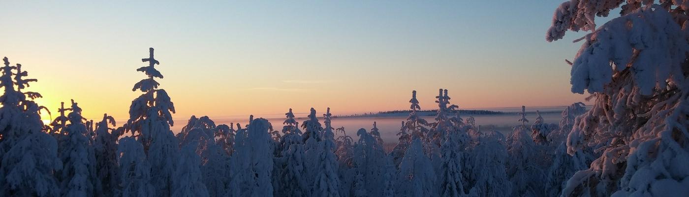 planet-ride-voyage-finlande-motoneige-1-soleil-hiver-paysage