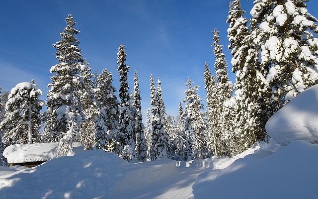 planet-ride-voyage-finlande-motoneige-2-hiver-piste-neige