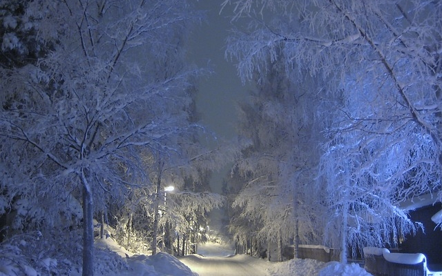 planet-ride-voyage-finlande-motoneige-3-arbre-gel-bleu
