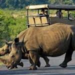 planet ride voyage moto afrique du sud rhinocéros J7