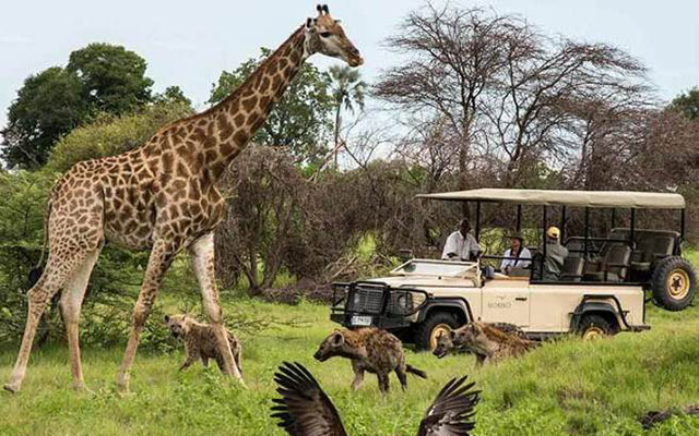 Planet Ride Safari Kruger