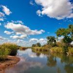 Planet Ride jour 7 safari afrique du sud
