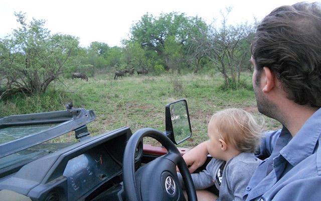 SUV safari Kruger