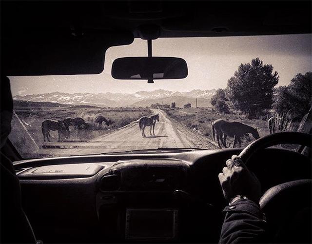 the trip road trip kirghizistan