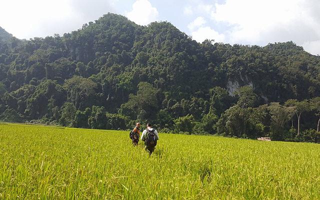 Planet Ride plaine montagneuse verdoyante itinéraire Laos