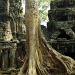 Parc d'Agkor Cambodge voyage Mékong