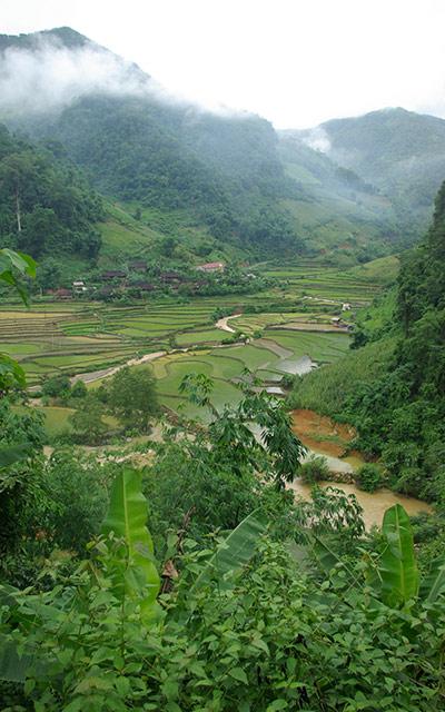 paysage rizières et montagnes Vietnam