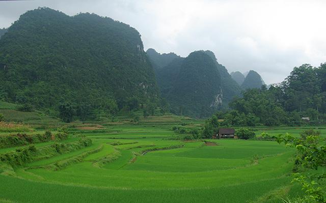 voyage moto vietnam plaines verdoyantes