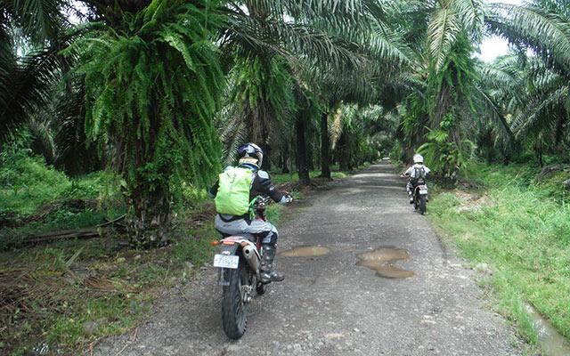 Voyage moto Costa Rica route riders