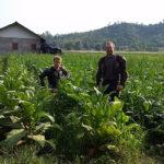 Raod trip Laos en offroad en moto enduro
