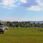 Planet Ride - Mongolie en 4x4 : jour 6