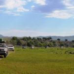 Planet Ride - Mongolie en 4x4 : jour 6