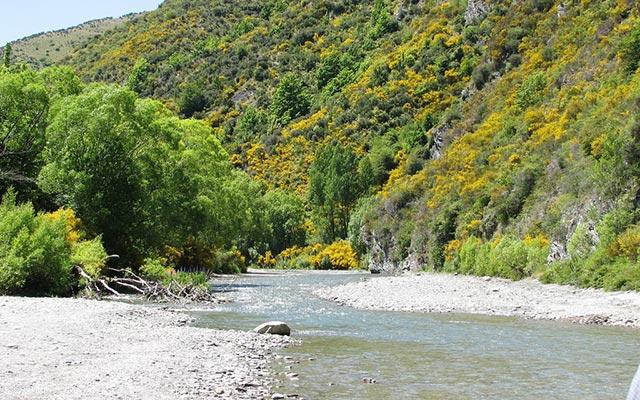 Rivière Arwen voyage hobbit