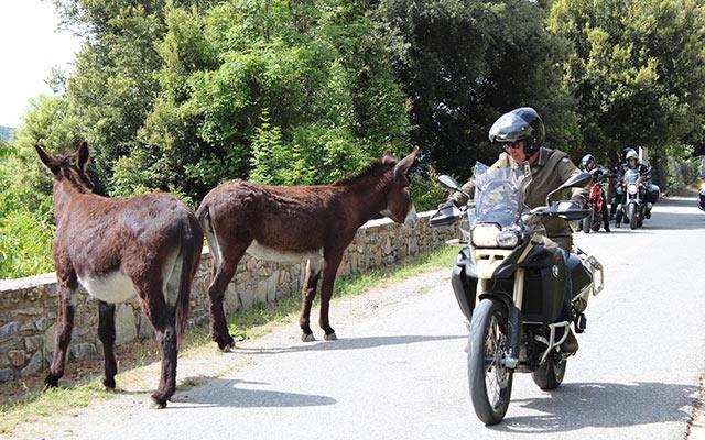 road trip corse moto