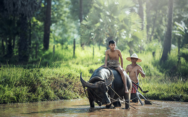 moto cambodge