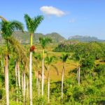 voyage cuba jour 5