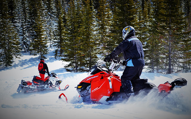 Snowmobile raids
