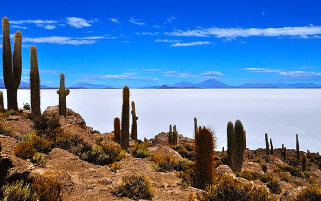 4x4 en Bolivie