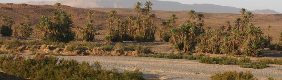 maroc en moto