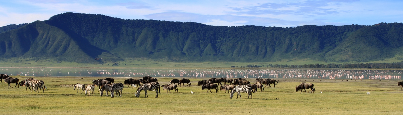 road trip tanzania