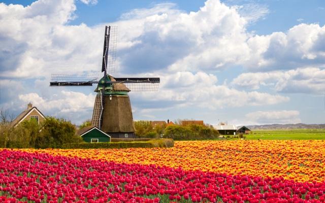 Voyage Pays-Bas avec Planet Ride